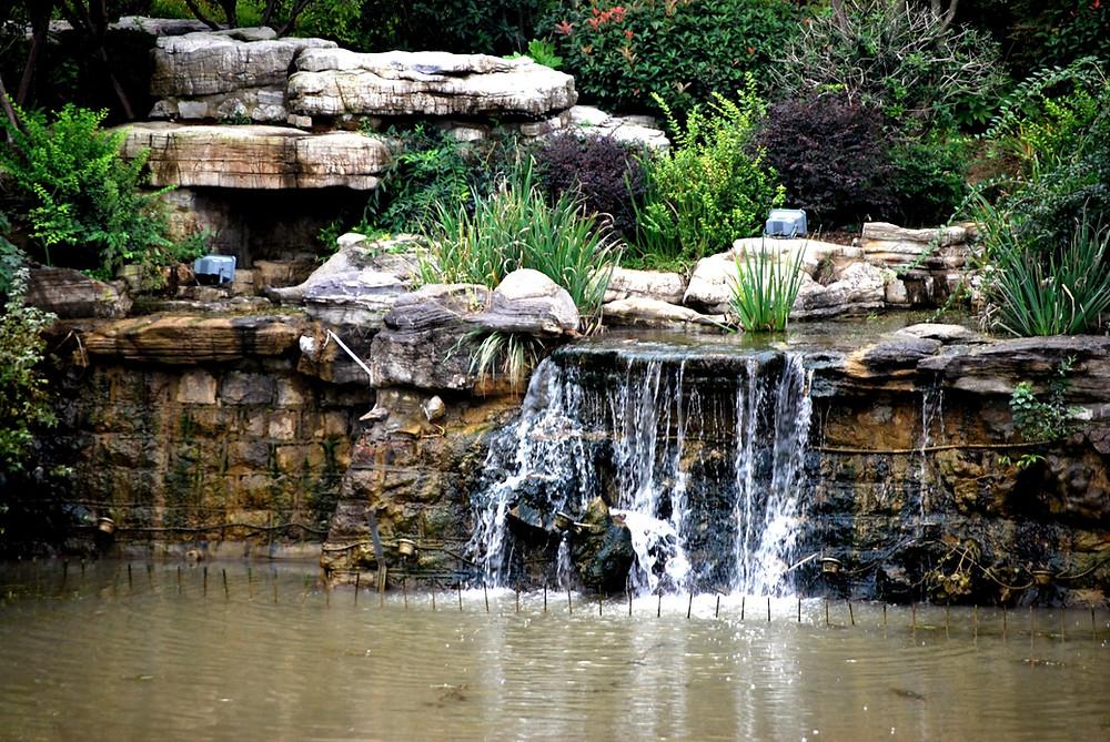 rocky bee fountain