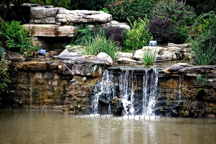 Rock Landscape Design and Installation