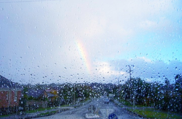 Rainbow leading the way