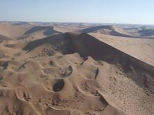 Dünen in der Namib 1