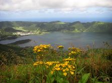 Caldera auf den Azoren 2
