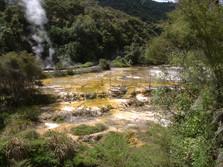 Waimangu Volcanic Valley 5