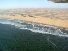 Dünen in der Namib 7
