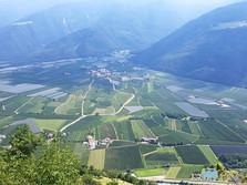 Schwemmkegel bei Tabland - Vinschgau