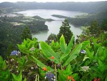 Caldera auf den Azoren 3