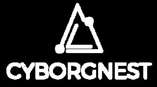 CN Logo-19.png