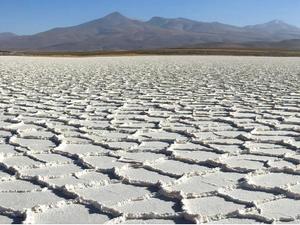 Salta: Ganfeng y Arena Minerals anunciaron el avance del proyecto de litio Sal de la Puna