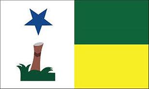 Bandeira-feijo.jpg