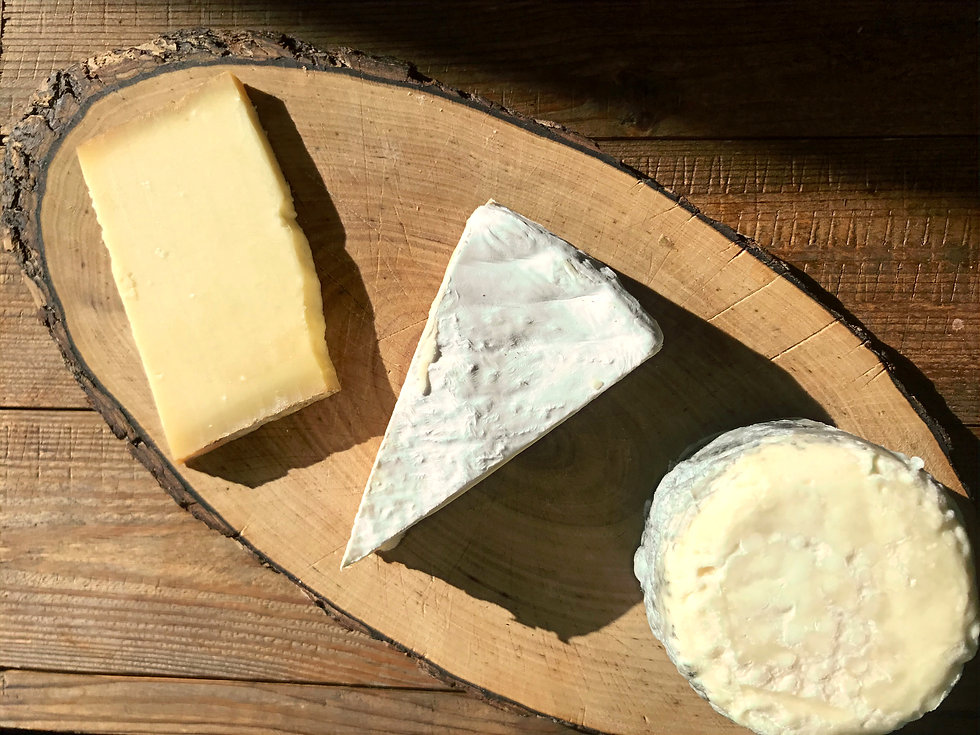 Münchner Käseplatte mit gereiftem Frischkäse, Camembert und Bergkäse von der Münchner Käse Manufaktur