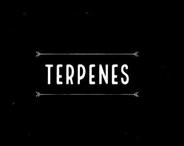 Terpenes.png