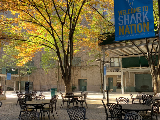 Students Plan on Staying On-Campus for Thanksgiving Break