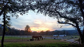sunset over arena.jpg