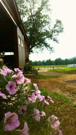 small barn entry