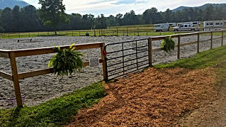 Walnut Cove Stables Horse Boarding And Care In