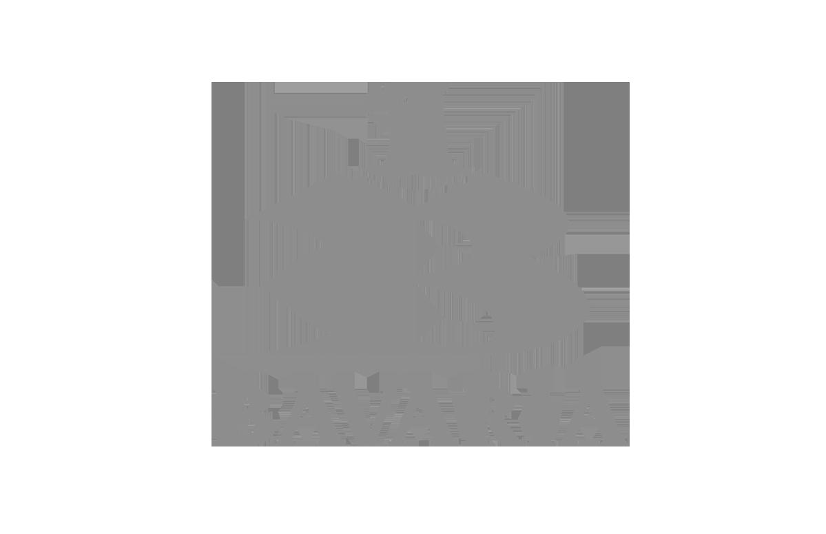 bavaria_escala_grises.png