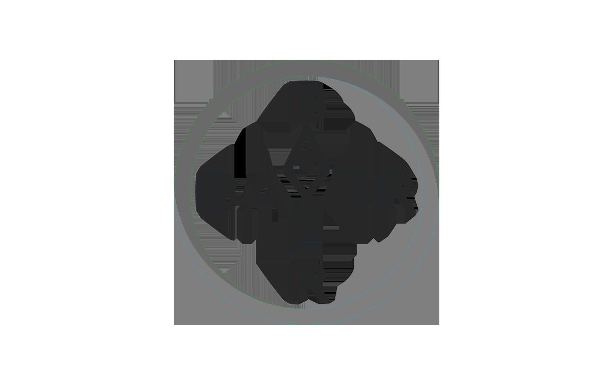 bayer_escala_grises.png
