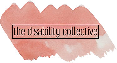 The Disability Collective logo, featuring the company name in black font against a coral swatch of water colour paint.