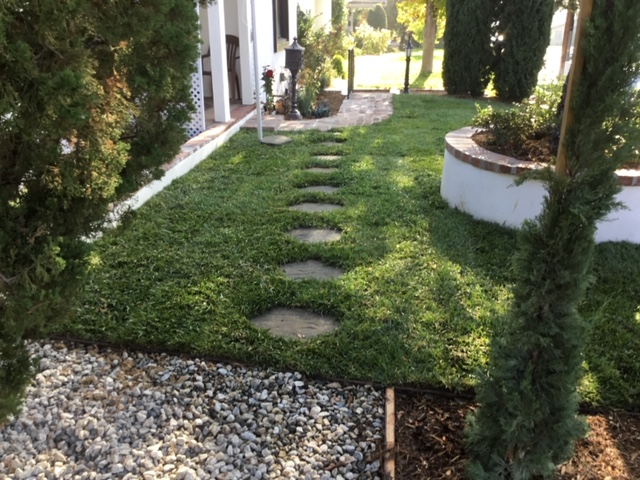 Natural Grass, Pavers & Plants Landscapi