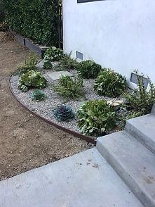 Succulent Plant Landscaping7.jpg