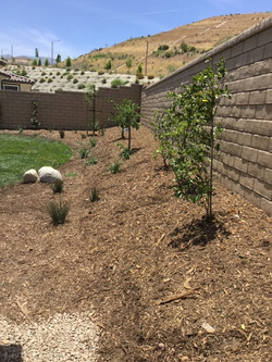 Natural Grass and Stone Landscaping2