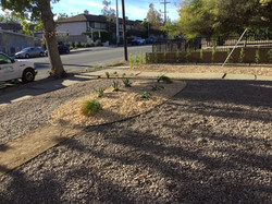 After Landscaping for Church4