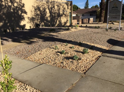 After Landscaping for Church5