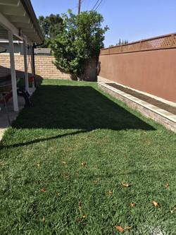 Raised Planter & Natural Grass2