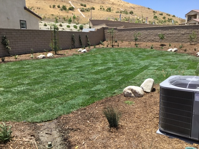 Natural Grass and Stone Landscaping