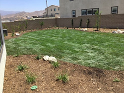 Natural Grass and Stone Landscaping4