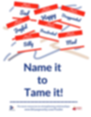 Name it to Tame it Poster.png