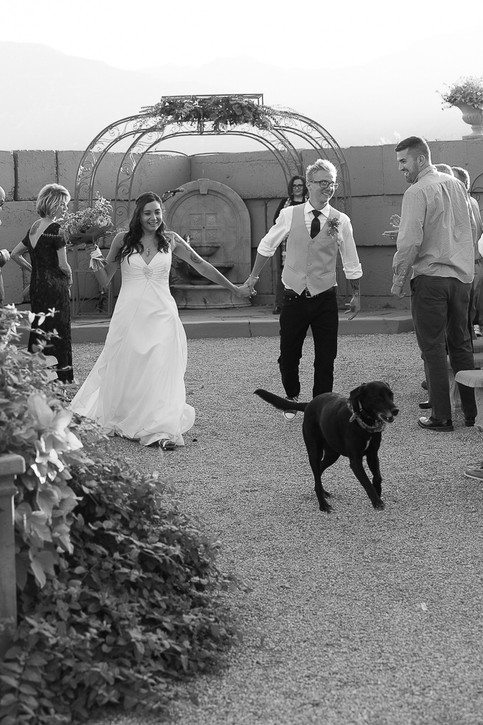 Wedding-420-2.jpg