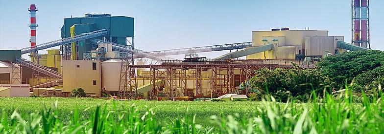Sugar Industry