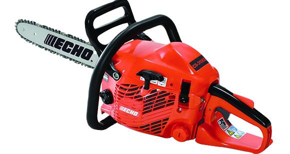 Echo CS310 ES