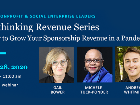 October 28 Webinar: Rethinking Revenue #4