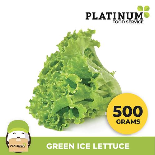 Lettuce Green Ice 500G