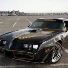 Holley Performance Article 79 Trans Am