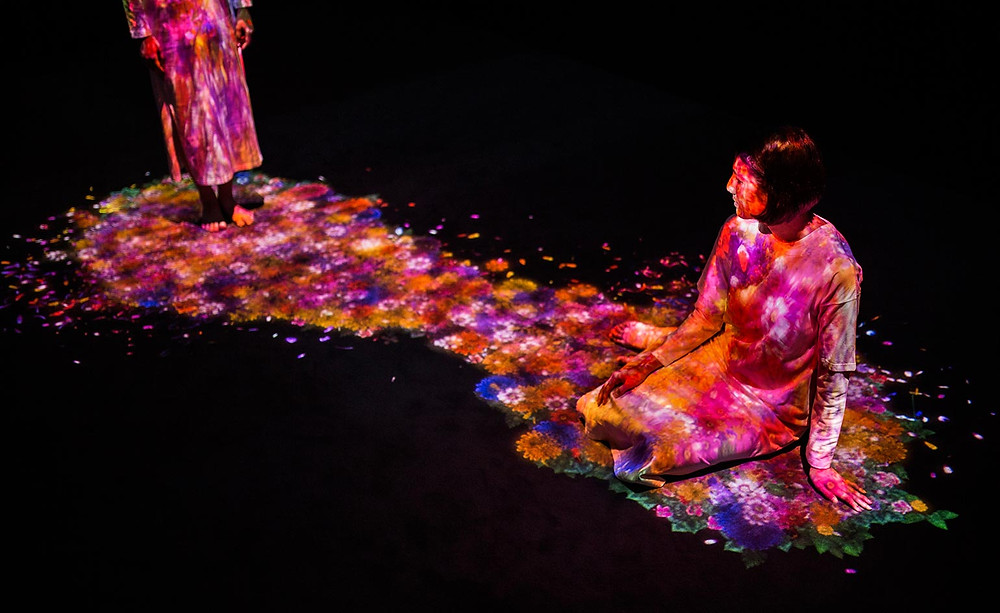 TeamLab adds another dimension to  Pace Gallery