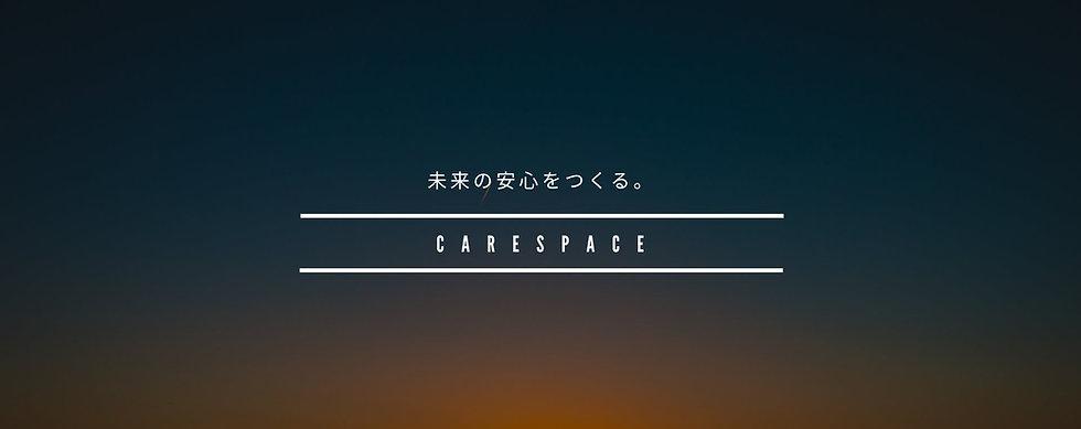 CARESPACE-Vison