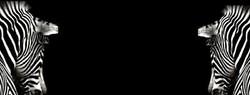 afrika bg 17.jpg
