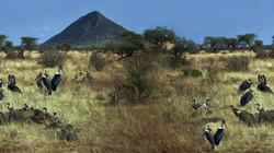 afrika 18.jpg