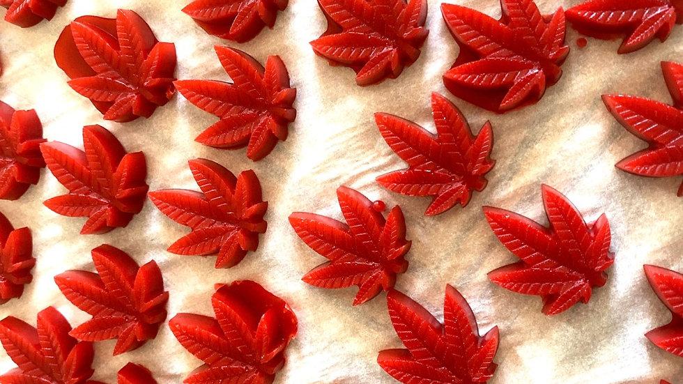 Red Raspberry Gummies 10 pack