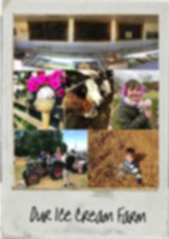 ice crean farm collage.jpg
