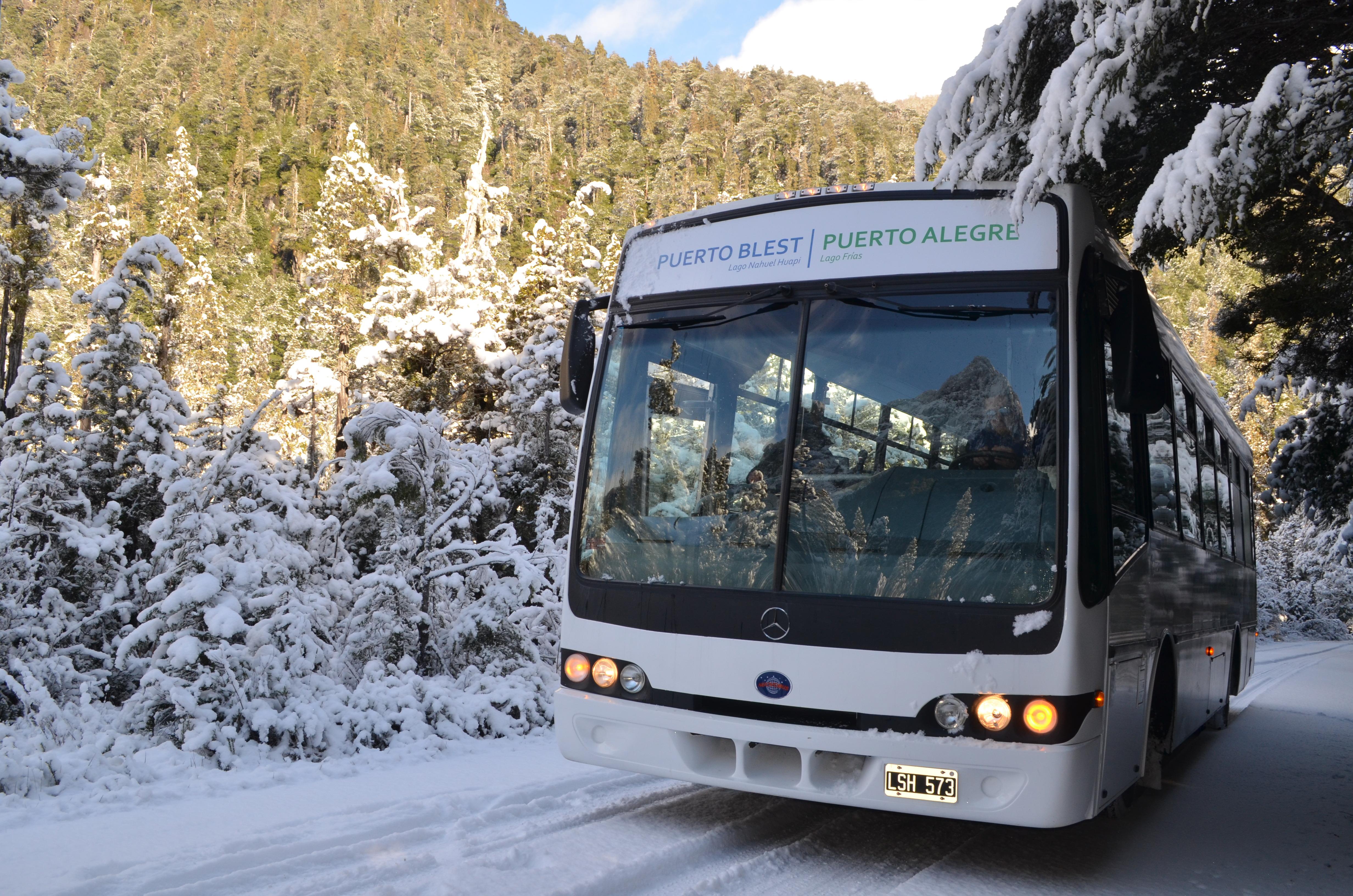 Ônibus Cruce Andino