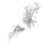 masseur, identité de marque, branding, design, designer, arts de vivre, beau et bon, aurélie ronfaut, thiluu, bordeaux, tours, paris, aix en provence, style, stylisme, bureau de style, illustration, stratégie de marque, communication, positionnement