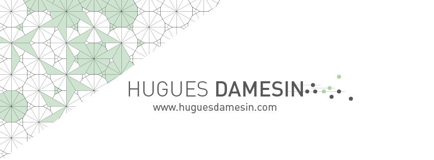 HUGUES DAMESIN X THILUU