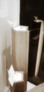 design tour, lyon, aurélie ronfaut, thiluu, bureau de style, design, designer, performance, scénographie, vitrine, boutique, design graphique, évènement, 35 octobre, création française, tendances, poésie, mobile