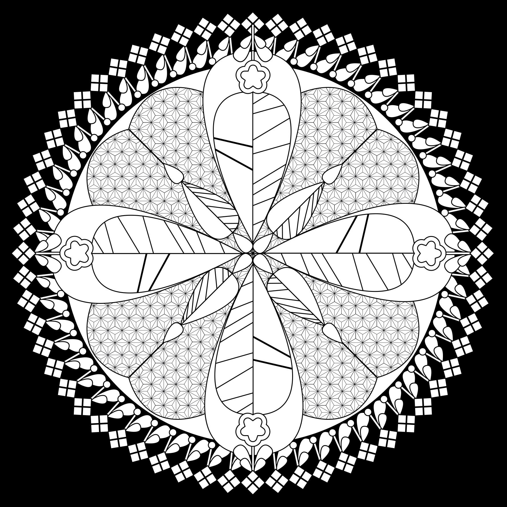FLEURUS X THILUU