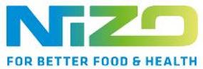 Logo Nizo.JPG