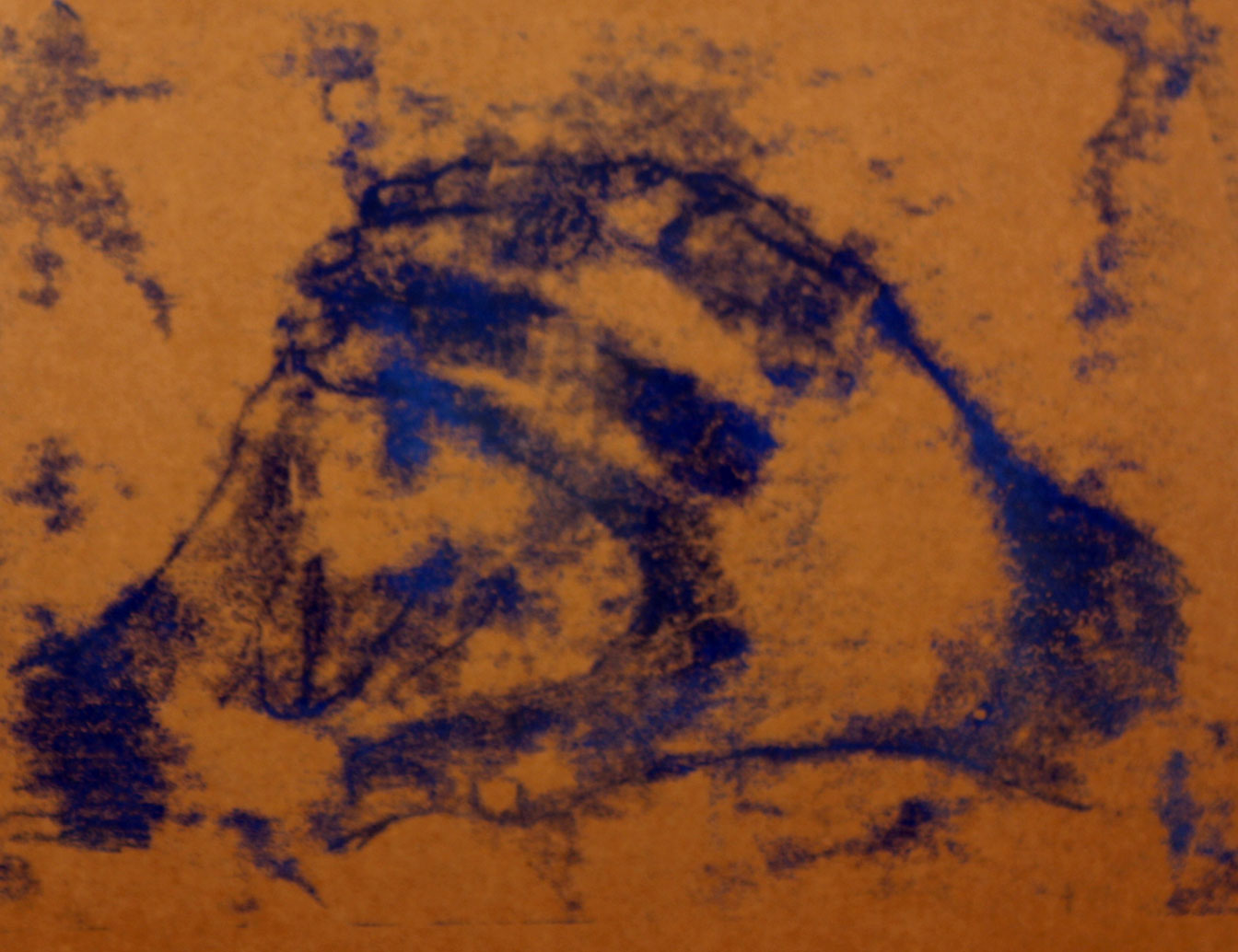 Life Drawing (2012) - Monoprint