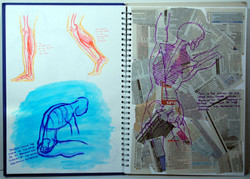 Life Drawing (2010) - Pen sketches on paper